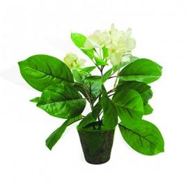 Flower&green paper 998435